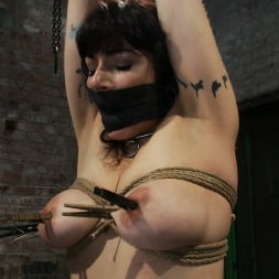 Annika in 'Kink' Actual member of the site applies to model and is accepted. This big titted MILF is bound and abused. (Thumbnail 14)