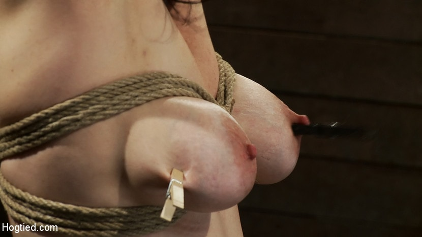 Kink 'Actual member of the site applies to model and is accepted. This big titted MILF is bound and abused.' starring Annika (Photo 15)