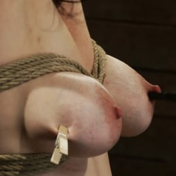 Annika in 'Kink' Actual member of the site applies to model and is accepted. This big titted MILF is bound and abused. (Thumbnail 15)