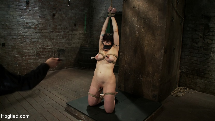 Kink 'Actual member of the site applies to model and is accepted. This big titted MILF is bound and abused.' starring Annika (Photo 16)