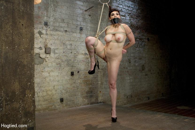 Kink 'Returns to HogTied' starring Annika (Photo 4)
