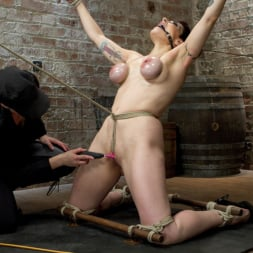 Annika in 'Kink' Returns to HogTied (Thumbnail 15)