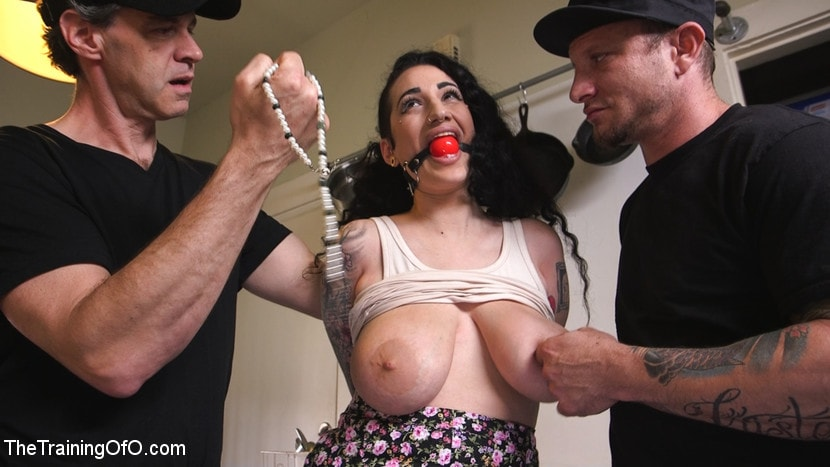 image Devoted domestic obedience training