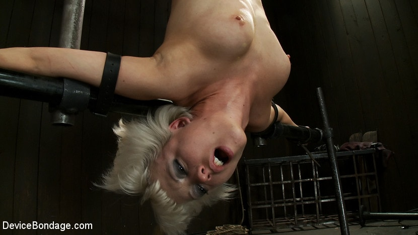 Kink 'Double Inverted Sybian Suspension' starring Ariel X (Photo 11)