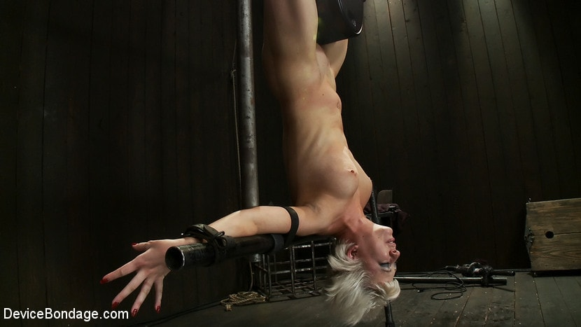 Kink 'Double Inverted Sybian Suspension' starring Ariel X (Photo 16)