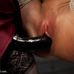 Ariel X in 'Kink' Lesbian 5 Slave Training Intake Featured Trainer Claire Adams (Thumbnail 12)