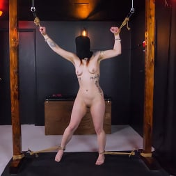 Baby Filth in 'Kink' Baby Gets Filthy: Babyfilth and Molecular (Thumbnail 11)
