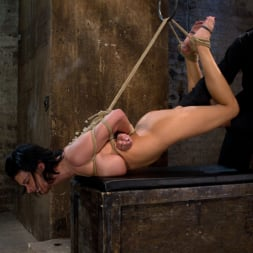 Bailey Brooks in 'Kink' Massive brutal orgasms mixed with foot torture, screaming and cumming, non-stop. Pain and pleasure! (Thumbnail 15)