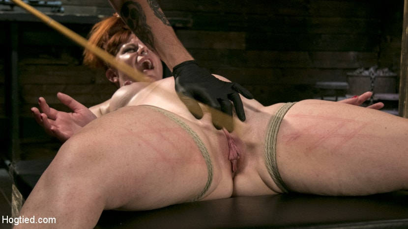 Kink 'Pain Slut in Extreme Bondage Suffers from Brutal Torment' starring Barbary Rose (photo 8)