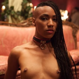 Bella Rossi in 'Kink' Masquerade Orgy with Nine Slaves,100 Horny Guests, Part One (Thumbnail 18)