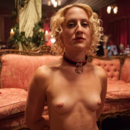 Bella Rossi in 'Kink' Masquerade Orgy with Nine Slaves,100 Horny Guests, Part One (Thumbnail 19)