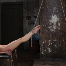 Casey Calvert in 'Kink' Casey and Dahlia Suffer Together in Brutal Bondage (Thumbnail 8)