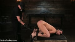 Cassandra Cain - Newbie Pain Slut Cassandra Cain Coerced with Orgasms and Metal Bondage (Thumb 04)