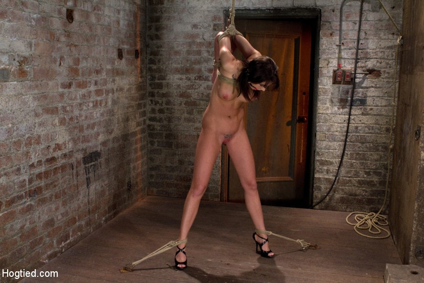 Kink 'Girl next door is overwhelmed from the orgasms we rip from her helpless body Brutal rope Bondage!' starring Chanel Preston (Photo 5)