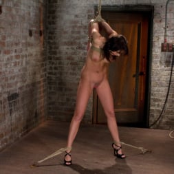 Chanel Preston in 'Kink' Girl next door is overwhelmed from the orgasms we rip from her helpless body Brutal rope Bondage! (Thumbnail 5)