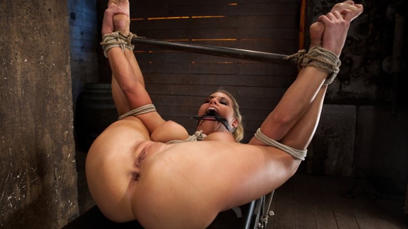 Suspension bitches in anal bondage