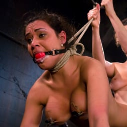 Charley Chase in 'Kink' Charlie's Natural 34 DD's get tied and shocked! (Thumbnail 11)