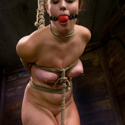 Charlotte Vale in 'Kink' Charlotte Vale, Harmony and Princess Donna Dolore (Thumbnail 8)