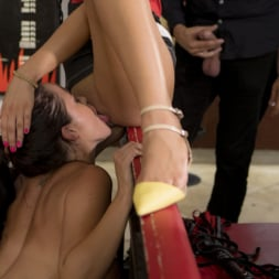 Cherry Kiss in 'Kink' Dolly Diore's All Out Public Fuckfest (Thumbnail 15)