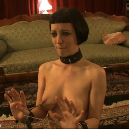 Cherry Torn in 'Kink' Behavior Unbecoming a Lady (Thumbnail 6)