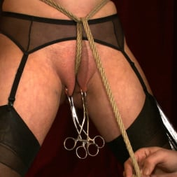 Cherry Torn in 'Kink' The Destruction of Torn (Thumbnail 2)