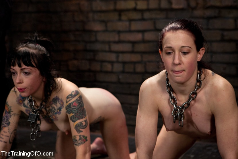 Kink 'Final Exam-muscles and sparky' starring Cheyenne Jewel (Photo 6)