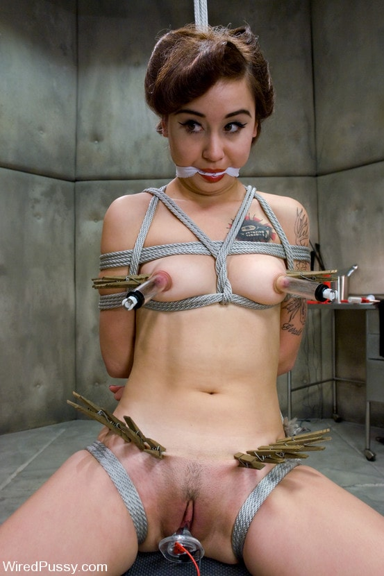 Kink 'New comer Sarah Wolfe' starring Claire Adams (Photo 16)