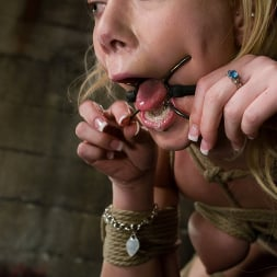 Claire Adams in 'Kink' Samntha Sin cums hard while her pussy is clamped and shocked (Thumbnail 8)