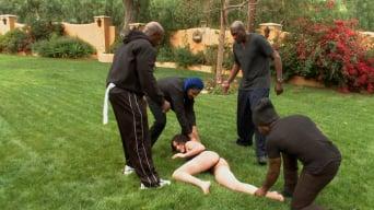 D Snoop に 'Waspyの雌犬は5巨大な黒い雄鶏をとります'