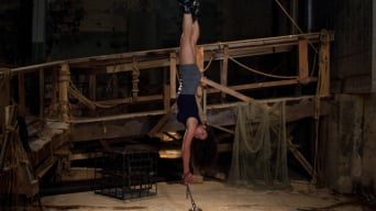 Dana Vixen in 'String Her Up, Hose Her Down'