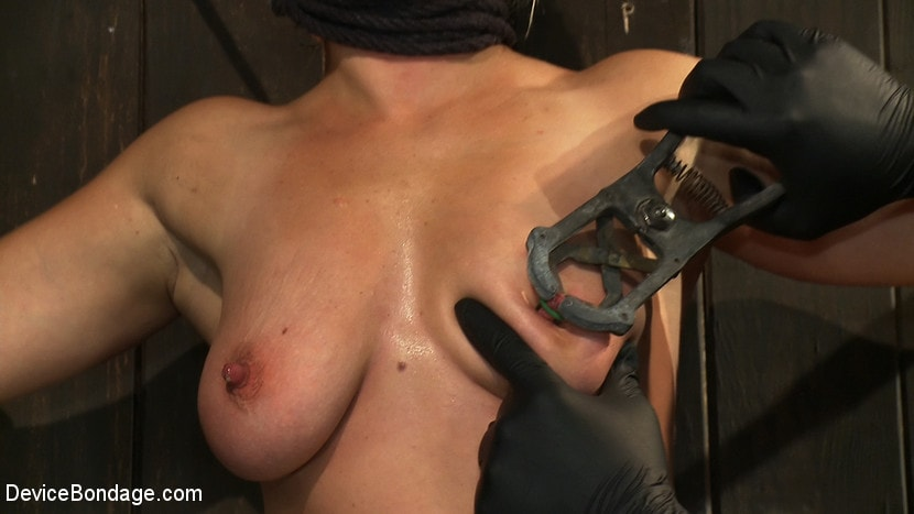 Kink 'Nipple brutality on the sybian until sweaty and wrecked' starring Dia Zerva (photo 13)