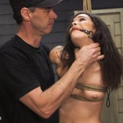 Eden Sin in 'Kink' Bondage Slut Eden Sin Submits to Deep Anal Discipline Training (Thumbnail 6)