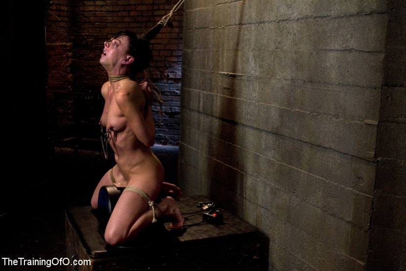 Kink 'Young Rope Slut Gets a Full Day of Intense Bondage - Live' starring Elise Graves (Photo 4)