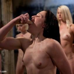 Emma Haize in 'Kink' February 7 Slave Intake (Thumbnail 6)