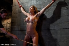 Felony - Hard Bodied Slut, Felony, is Torn Apart During a Long Day of Brutal Torture (Thumb 01)