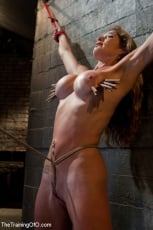 Felony - Hard Bodied Slut, Felony, is Torn Apart During a Long Day of Brutal Torture (Thumb 08)