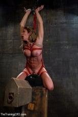 Felony - Hard Bodied Slut, Felony, is Torn Apart During a Long Day of Brutal Torture (Thumb 15)