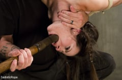 Freya French - Newcomer Pays the Price (Thumb 03)