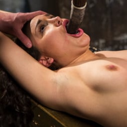 Gabriella Paltrova in 'Kink' Super Slut is Subjected to Brutal Torment and Bondage! (Thumbnail 3)