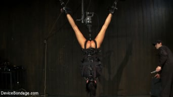 Gia DiMarco in 'Bound in a straightjacket, inverted suspended Fucked by a machine, made to suck cock and zippered.'