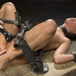 Gina Valentina in 'Kink' 19 Year Old Brazilian in Devastating Bondage (Thumbnail 14)