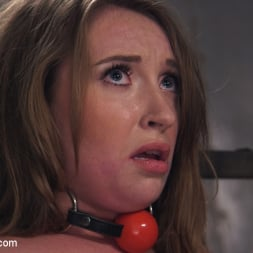 Harley Jade in 'Kink' Anal Agent (Thumbnail 7)