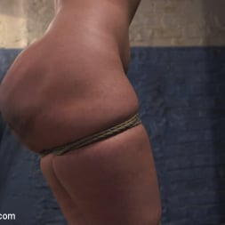 Harley Jade in 'Kink' Anal Agent (Thumbnail 9)