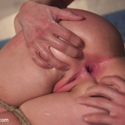 Harley Jade in 'Kink' Anal Agent (Thumbnail 13)