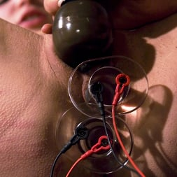 Harmony in 'Kink' COLLECTION: Part 3 (Thumbnail 13)