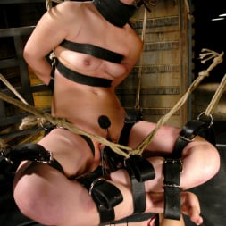 Harmony in 'Kink' Devi Lynne and Harmony (Thumbnail 11)