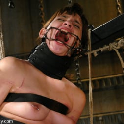 Harmony in 'Kink' Devi Lynne and Harmony (Thumbnail 12)