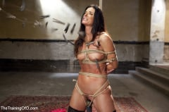 India Summer - India Summer's Principles of Servitude, Day One (Thumb 03)