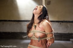 India Summer - India Summer's Principles of Servitude, Day One (Thumb 04)
