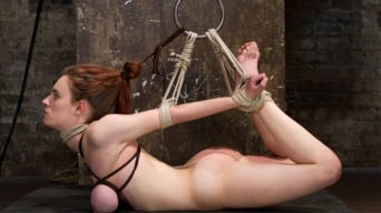 Iona Grace in 'Big Titted Slut Iona Grace Suspended and Tormented on HogTied.com'